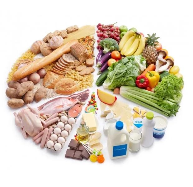 مقدمه تغذیه و بارداری 1